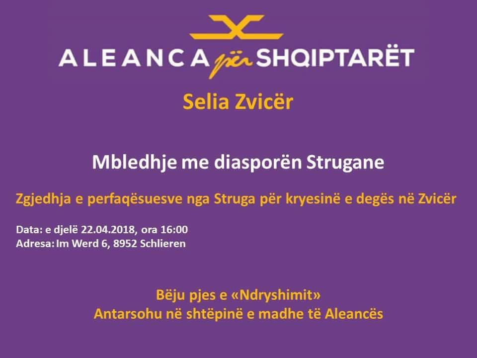 Aleanca per Shqiptaret Zvicer zgjedh perfaqsine per Struge