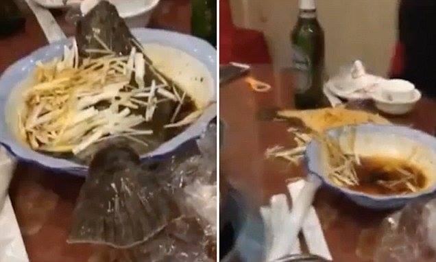 Peshku i pjekur arratiset nga pjata (VIDEO)