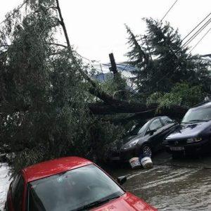 Kaos në Shkup: Makina të shkatërruara nga era dhe shiu (FOTO)