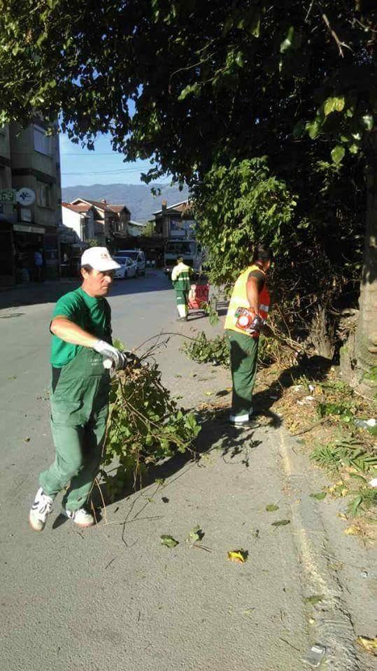 Komunalja e Strugës pastroi sipërfaqet e blerta në qytet (FOTO)