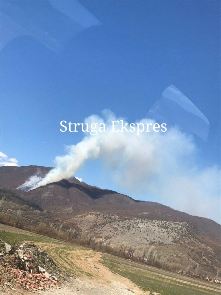Zjarri kaplon malin e Dollogozhdës (FOTO)