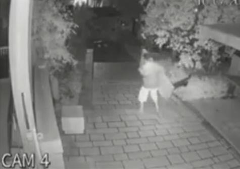 SKANDALOZE/ Ja si i riu vjedh tavolinën e xhamisë (VIDEO)