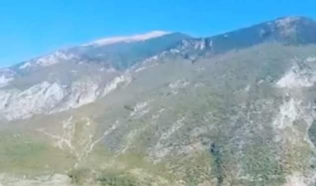 Bariu sulmohet nga ariu, transportohet me helikopter drejt spitalit (VIDEO)