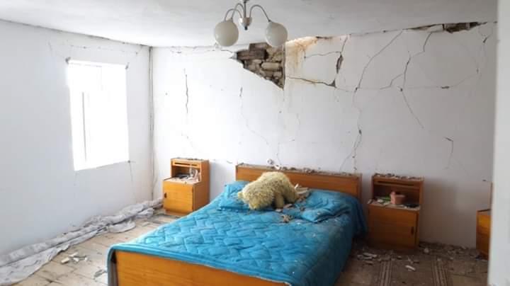 Shqipërinë e goditën 19 tërmete në 24 orët e fundit