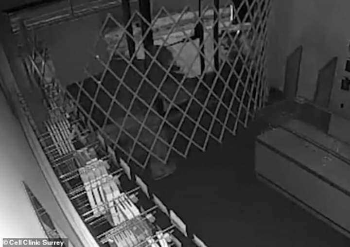 Hajduti ngec brenda në dyqanin që po vidhte (VIDEO LAJM)