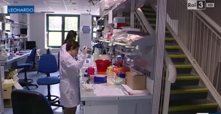 SKANDALOZE/ Ish ministri italian nxjerr videon: Si po e prodhonin në laborator kinezët koronavirusin në vitin 2015 (VIDEO)
