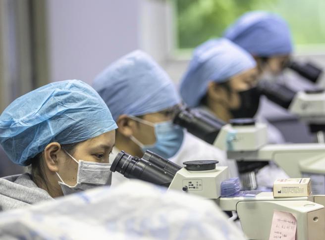 Konfirmohen në Shqipëri 2 rastet e para me koronavirus