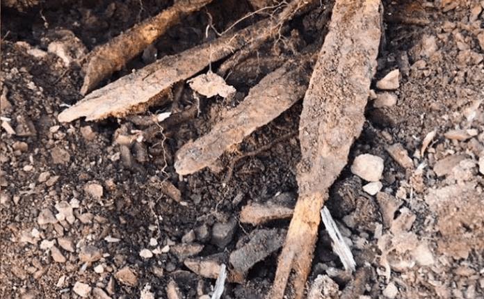 Zbulohet varreza e madhe ILIRE (VIDEO)